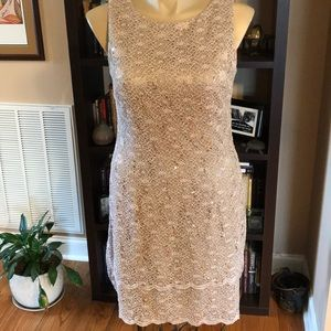 Alex Evenings Sparkling Tiered Champagne 16 Dress